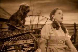 Judy Garland sings Somewhere Over the Rainbow in The Wizard of Oz